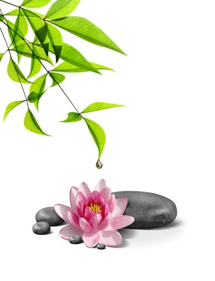 Rosh Pina Spa - Spa Treatments